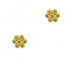 TAI Crystal Flower Gold Stud Earrings