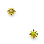 TAI 14k Gold Vermeil Watermelon Tourmaline Stud Earrings