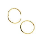 22k Vermeil Hingees Hoop Earrings